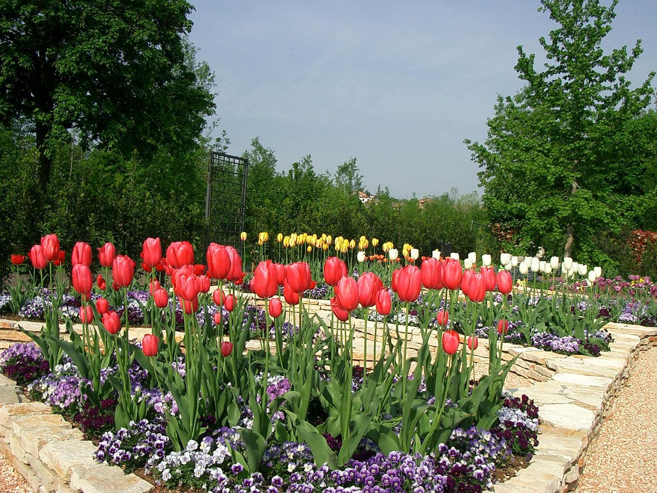 Il giardino segreto il giardino degli angeli