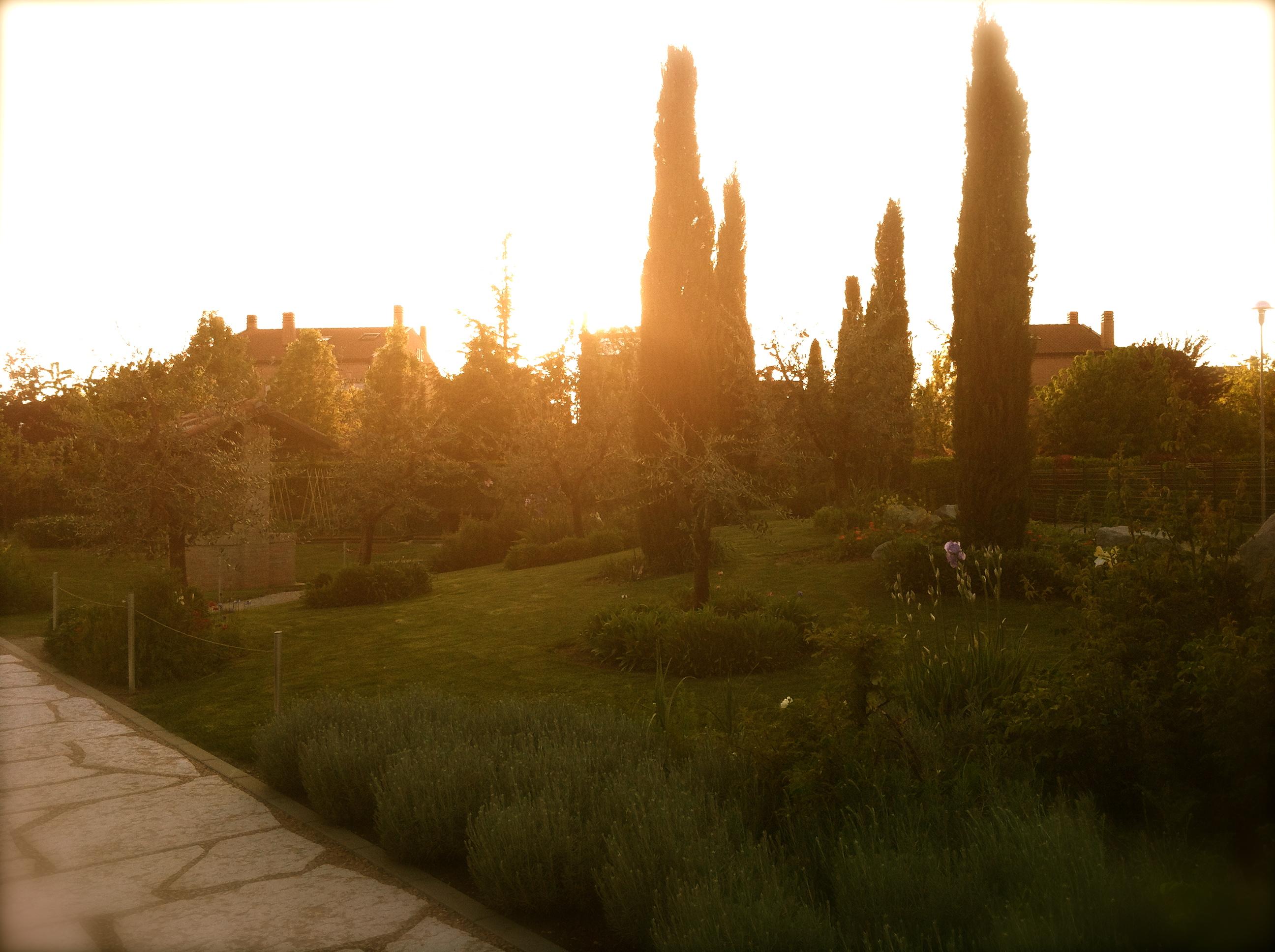 Alla Scoperta Del Giardino Il Giardino Degli Angeli