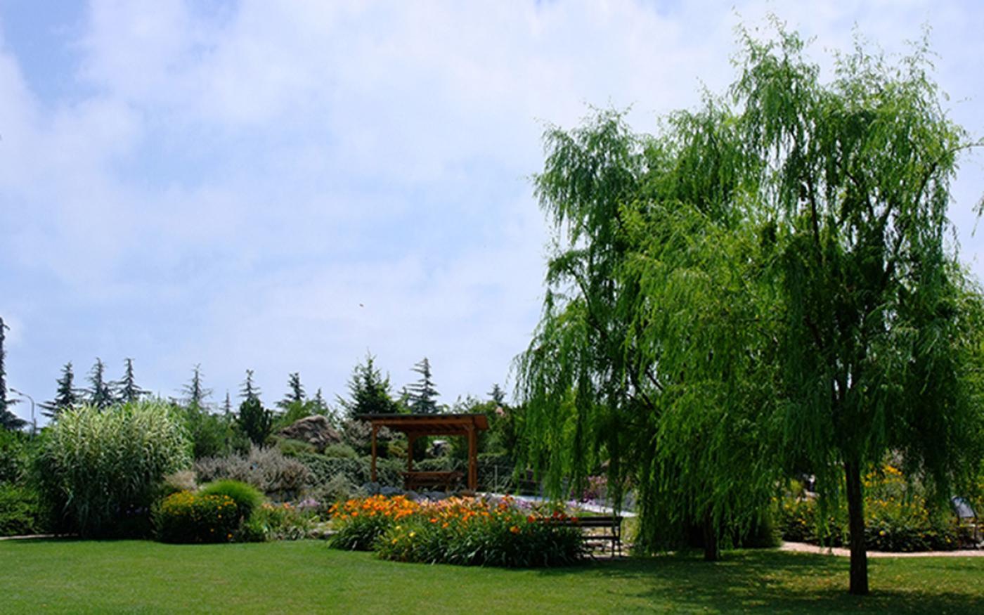 Giardino giardino del mandarino yu with giardino giardini landscape garden design giardino in - Giardino del mandarino yu ...