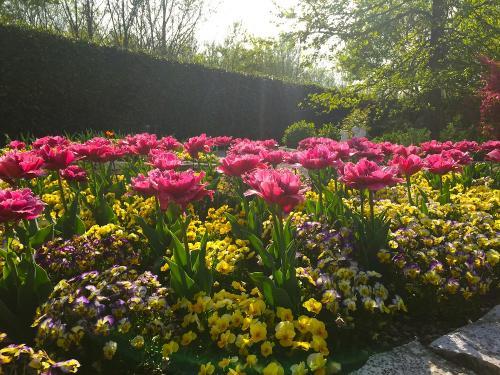 Il Giardino degli Angeli aiuola Giardino Segreto