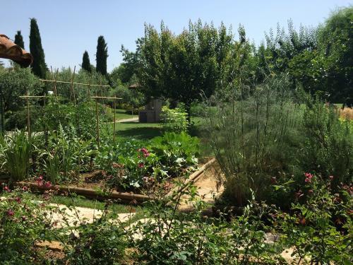 Alla scoperta del giardino il giardino degli angeli - Il giardino degli angeli ...